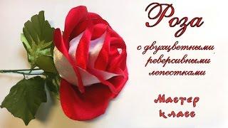 Роза #канзаши из атласной ленты с двухцветными лепестками МК. Rose of satin ribbon dual-color petals(Роза #канзаши из атласной ленты с двухцветными реверсивными лепестками. Канзаши мастер класс. Мастер класс..., 2016-03-29T07:00:00.000Z)