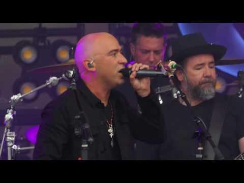 Live - Dolphin's Cry - 2017 Lollapalooza