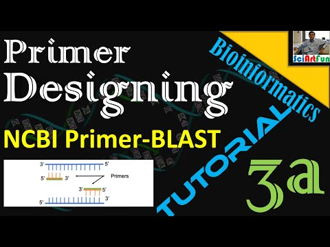 Primer Designing Using NCBI Primer Blast