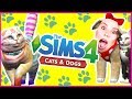 THE SIMS 4 CATS DOGS NEW Expansion Trailer Reaction