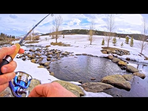 Urban Fishing A TINY RIVER!?
