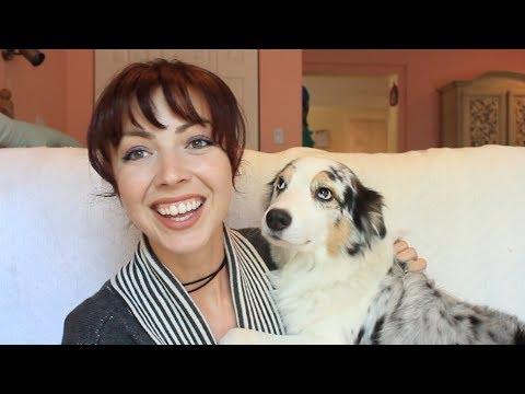 Yummy Glucosamine Dog Treats for Luca My Australian Shepherd