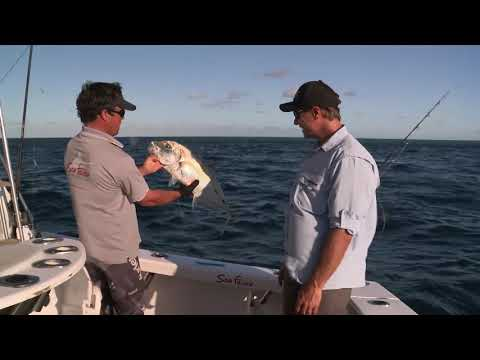 EP 4 - Whitsundays | ESCAPE FISHING WITH ET