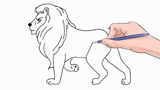 How to Draw a Lion Easy Step by Step