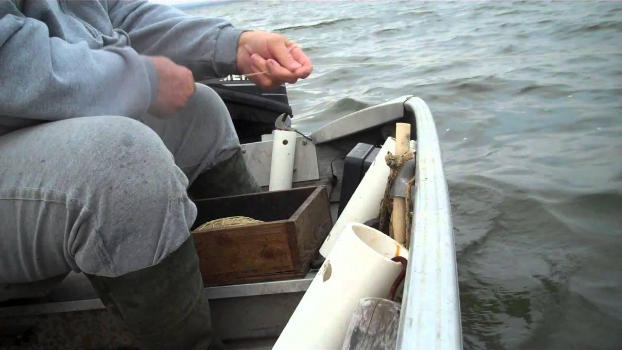 Oklahoma boxline fishing grand lake doovi for Lake of egypt fishing report