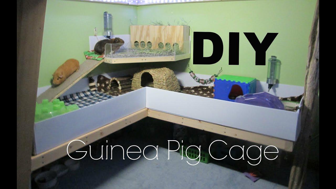 DIY Guinea Pig Cage - YouTube