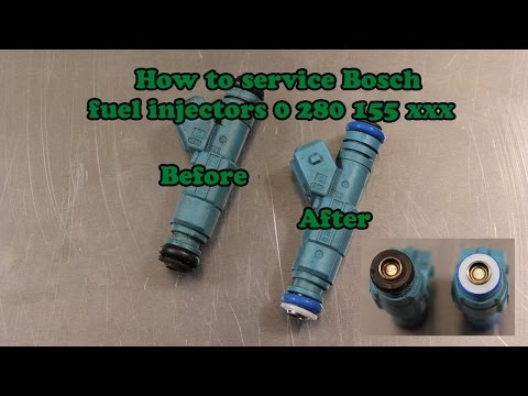 KIT REPAIR REBUILD SERVICE  Bosch Fuel Injector  0280156065  FILTER CAPS ORING