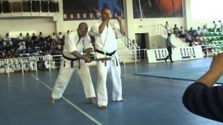 Azerbaijan Oyama Karate Federation / Sensei Hamlet Alili - Baseball-bat Tameshiwari