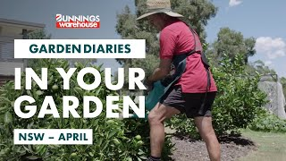 Gardening in April | New South Wales | Bunnings Garden Diary