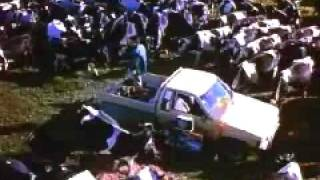 Price of milk trailer