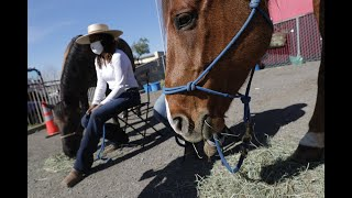Equestrian and activist Brianna Noble brings horses to East Oakland