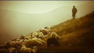 The Lonely Shepherd - Gheorghe Zamfir & André Rieu