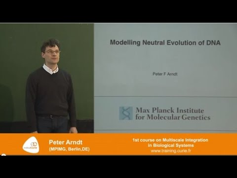 "Peter Arndt : ""Modelling neutral evolution of DNA"""