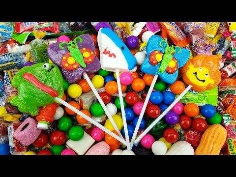 Baby Shark Doo doo doo doo Animal Song Nursery Rhymes with New Lollipops