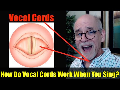 Ep.9: Singing Basics: How do Vocal Cords Work?