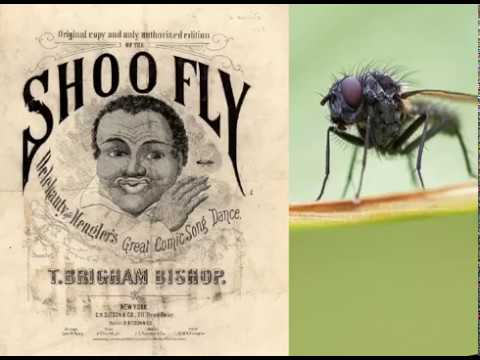 The Shoo Fly Man