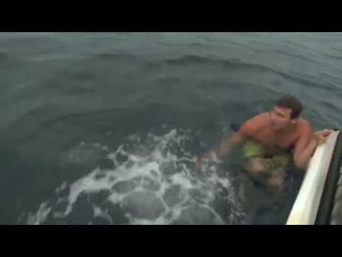 Shark Attack Near Miss (MUST SEE)