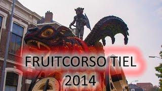 Fruitcorso Tiel, 2014