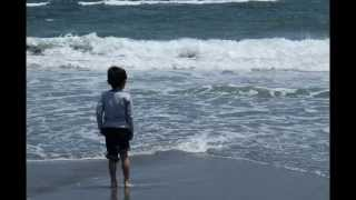 亀田秀次 - 太陽の花 (安房医療福祉専門学校校歌)