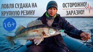 Крупная резина на судака осенью 2020 Удачная рыбалка на Каме на резину от 16 до 18 см