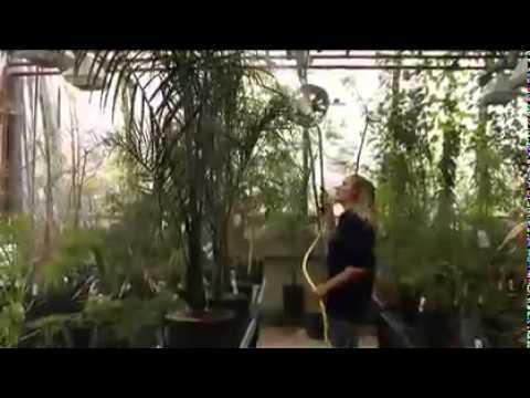 Millennium Seed Bank film