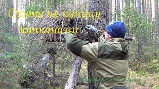Охота на куницу . Начало сезона 18/19 заряжаю капканы. Малый путик. Hunting for marten