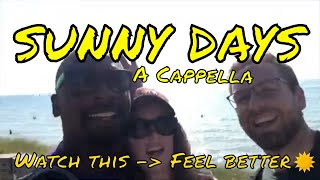Sunny Days A Cappella - Watch This, Feel Better.