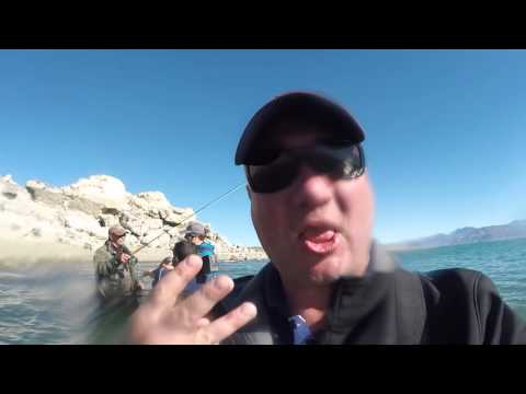 Exploring OUR Backyard: Pyramid Lake Ladder Fishing