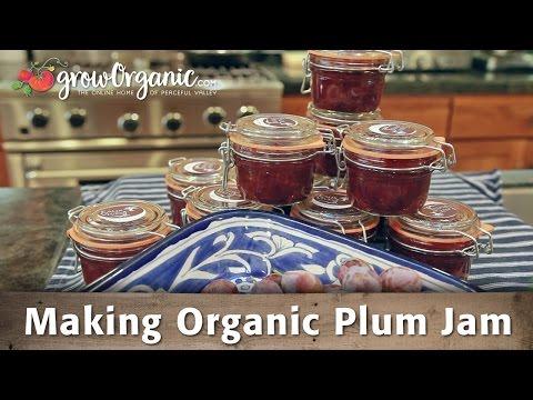 How to Make Organic Plum Jam