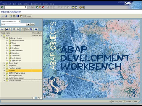 Table Maintenance Generator (SE11 ABAP Dictionary) - YouTube