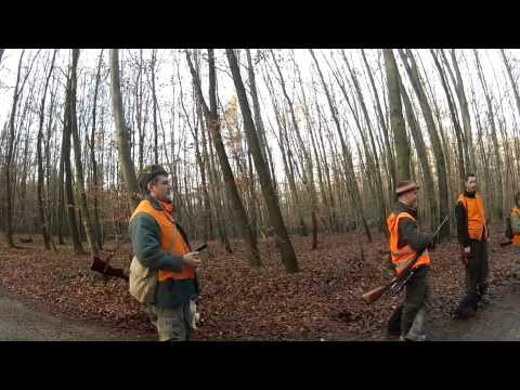 Spoločná poľovačka na diviaky