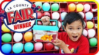 GOLD FISH Ballon Challenge Winner, LA County Fair 2017, Family Fun Game Time – TigerBox HD