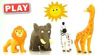 КУКУТИКИ PLAY - АФРИКА - Изучаем животных Африки - Играем с Анной - Funny Kids Video
