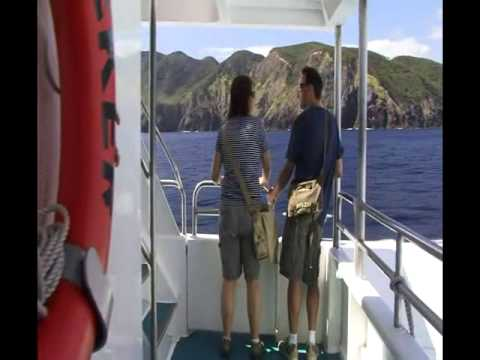 Bay of Islands day tour from Auckland New Zealand