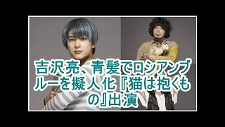 吉沢亮、青い髪擬人化ロシアンブルー「猫が握るもの」出演.