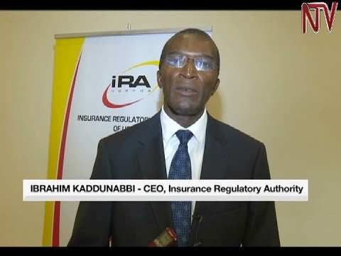Insurance sector registers growth despite tough economic times