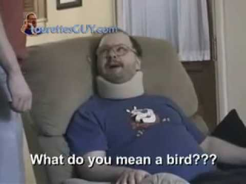 Tourettes Guy - Bird In The House