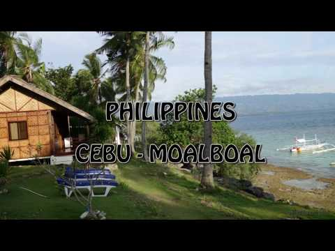 Philippines Cebu MoalBoal