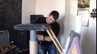 Домик для кошки(Как сделать домик для кошки с когтеточкой своими руками., 2015-06-20T13:03:06.000Z)