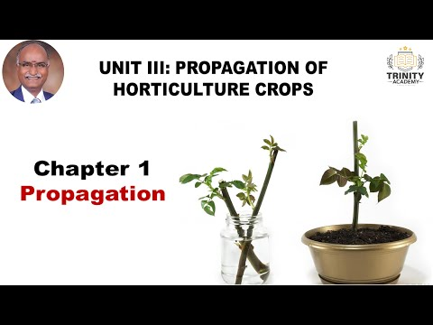 HORTICULTURE Unit III: Propagation and its types
