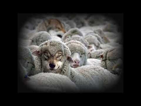 La verdadera religion es la busqueda individual de la verdad