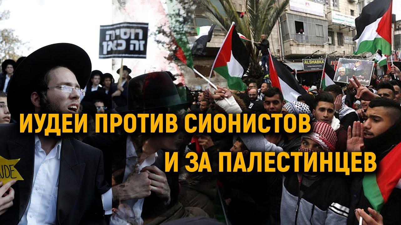 Ортодоксальные иудеи о сионистах: «Им нужна война!». Эксклюзив на АлифТВ