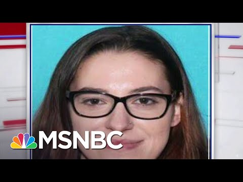 FBI Reports Woman Intended To Ship Pelosi's Office Computer To Russia | Craig Melvin | MSNBC