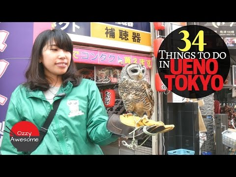 34 Things To Do In UENO TOKYO!  (Most are Cheap or Free!)