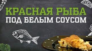 Красная рыба под белым соусом. Дело вкуса 30.11.2018