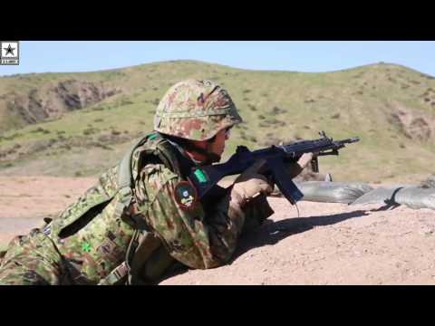 Military   Japan Ground Self-Defense Force – Platoon Attack Training