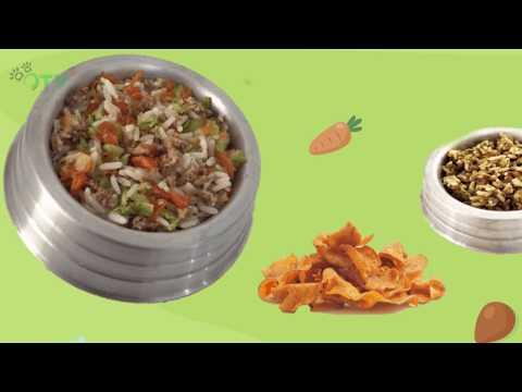 Momento Pet - Alimentação Natural para cães
