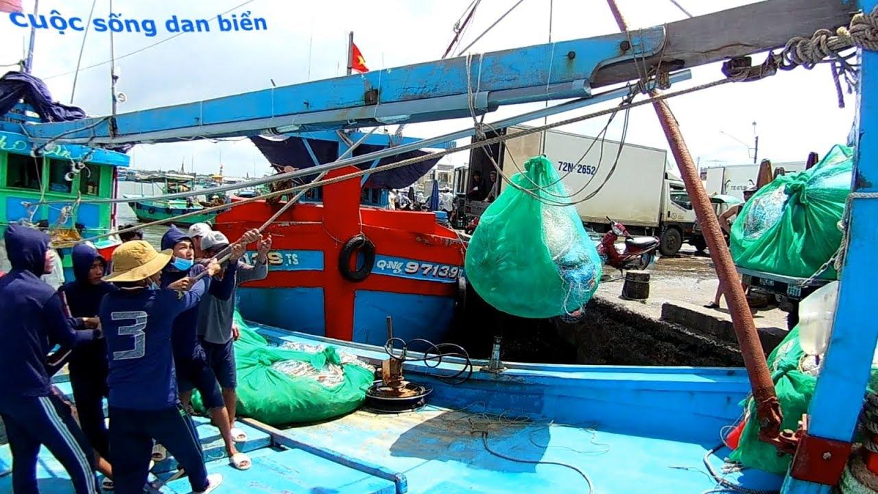 công việc đầu tiên khi ghe lưới vào bờ.tuy cực nhưng mà vui.cuộc sống dân biển.