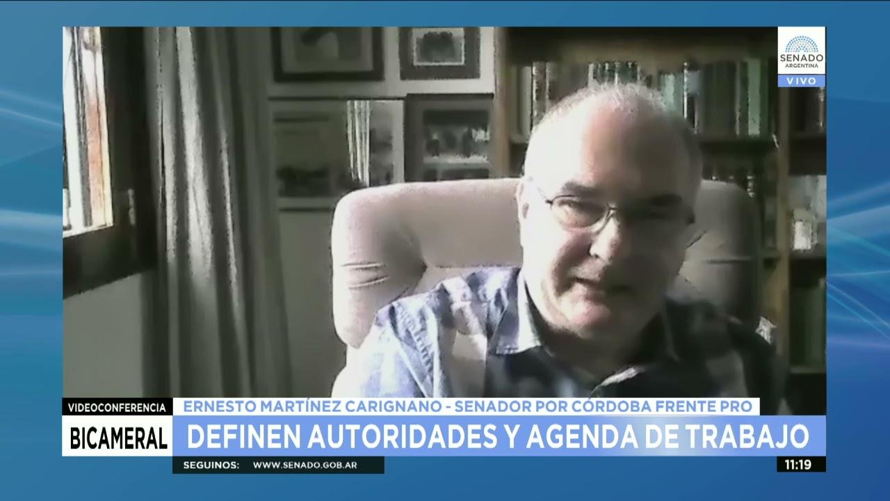 SDOR. ERNESTO MARTÍNEZ - COM. BICAMERAL DE DEUDA EXTERNA 09-04-21