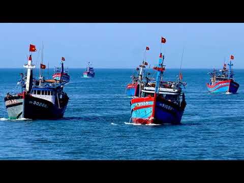 VN đang thực hiện chiến tranh nhân dân trên biển thế nào? (365)